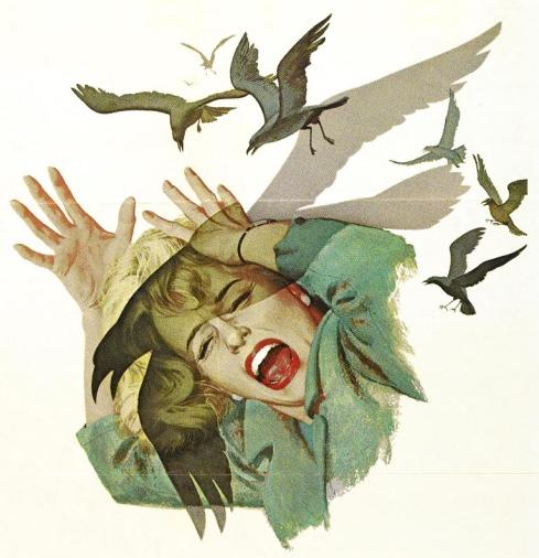 hitchcock-birds